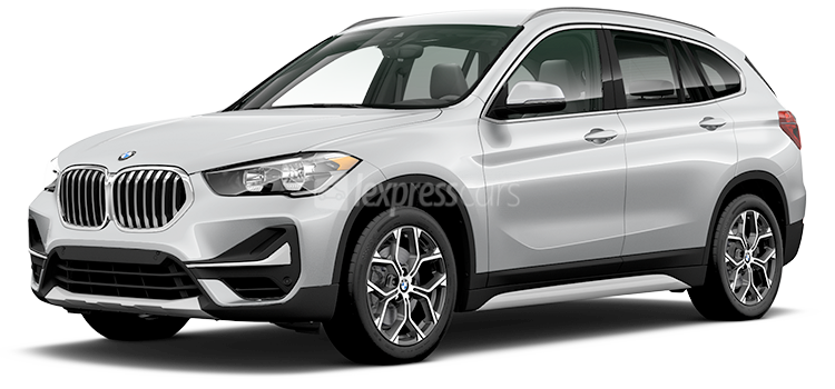 New BMW X1_1