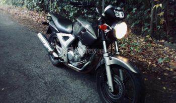 Second-Hand Honda CBX 2010 full