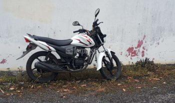 Second-Hand Suzuki Hayate 2014 full