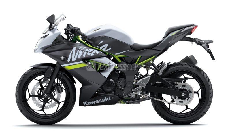 New Kawasaki Ninja 250SL full