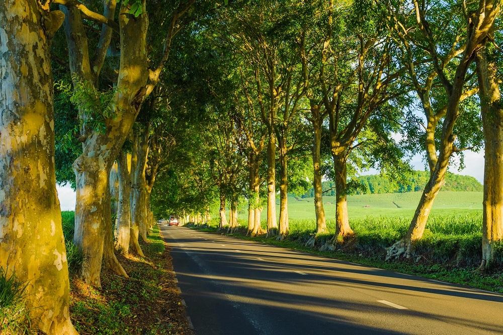 Road Trip Mauritius Centre Sud LexpressCars.mu
